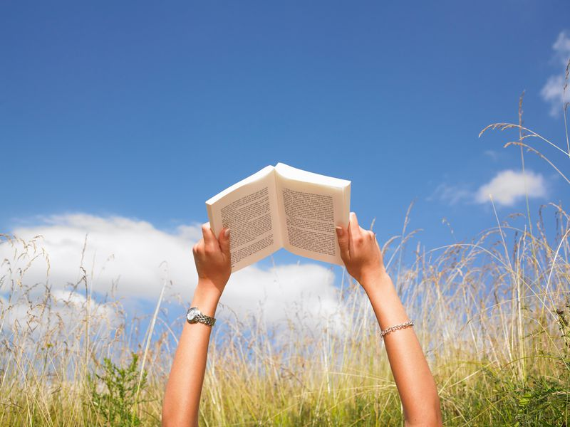 Things that book lovers do best